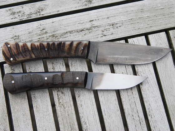 Muffel - Steinbock